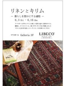 libecoDM